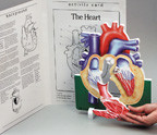 Science learning 3D diagram and booklet